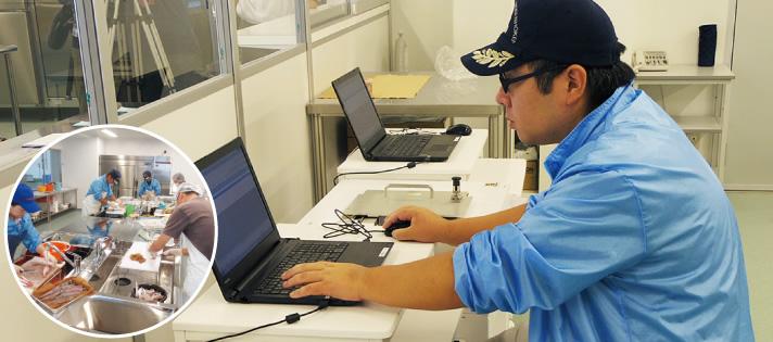 CslやNalシンチレーション検出器で検査(小名浜魚市場検査室)